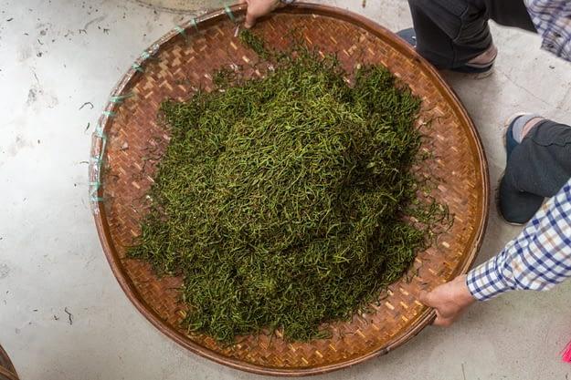 geknetete Teeblätter